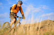 Pollo e ciclismo, una dieta con tante proteine e pochi grassi