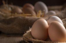 storia e curiosità sulle ricette tradizionali a base di uova